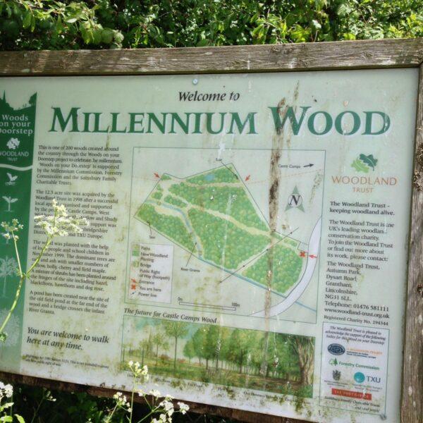 Millennium Woods, Castle Camps photo 1