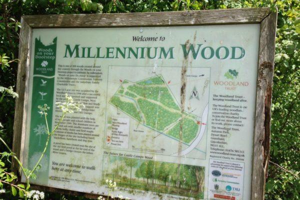 Millennium Woods, Castle Campsphoto