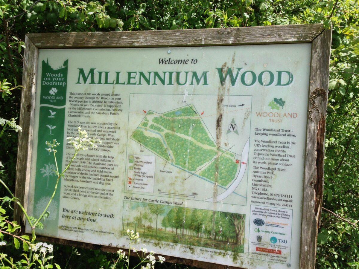 Millennium Woods, Castle Camps large photo 1