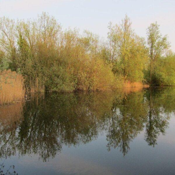 Milton Country Park photo 1