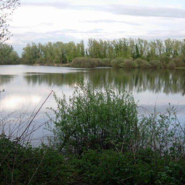 Milton Country Park photo 2