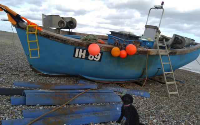 Minsmere - Sizewell Dog walk in Suffolk (East)