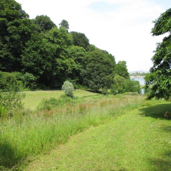Mount Edgecumbe Country Park photo 6