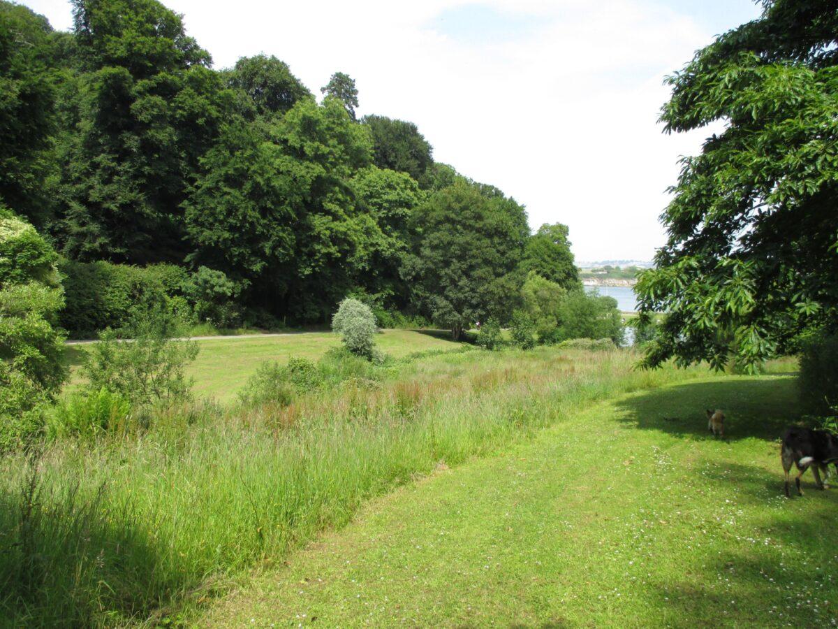 Mount Edgecumbe Country Park large photo 6