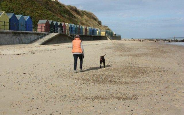 Mundesley Beach Dog walk in Norfolk