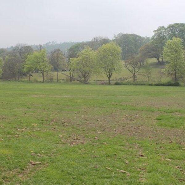 Dog walk at Myrtle Park, Bingley