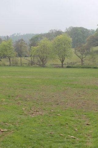 Dog walk at Myrtle Park, Bingley photo