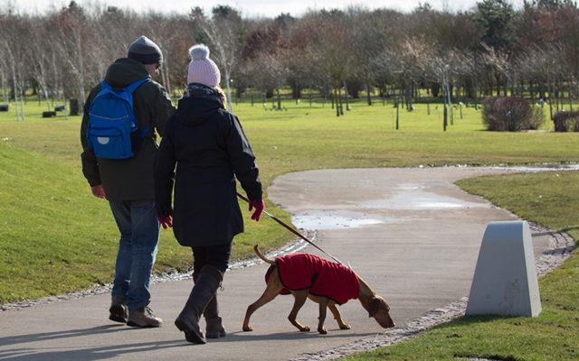 National Memorial Arboretum Dog walk in Staffordshire