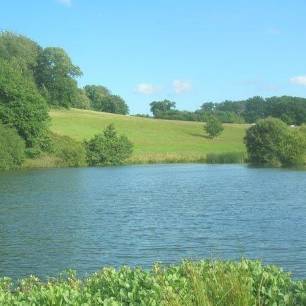 National Trust Woolbeding Parkland photo 1