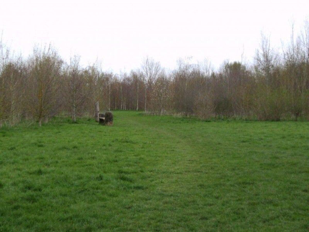 Netherclay Community Woodland large photo 3