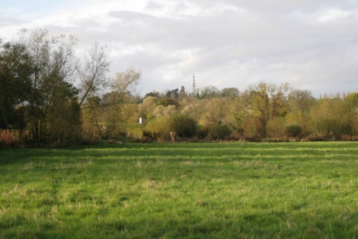 Newbold Comyn large photo 3