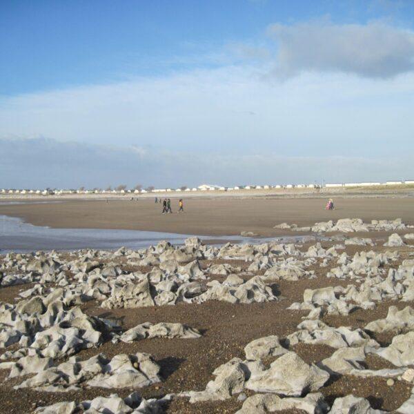 Newton Beach photo 3