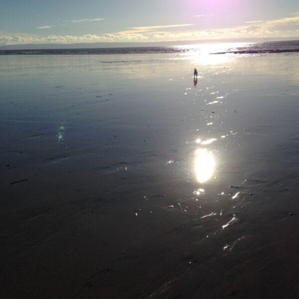 Newton Beach photo 5