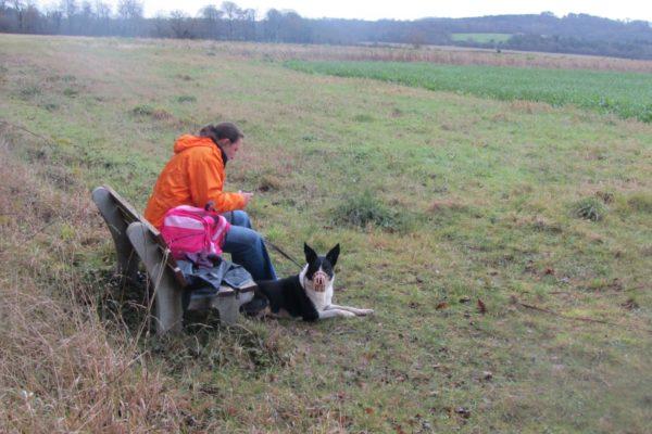 Newton Tony Near Dogs Trust Salisburyphoto