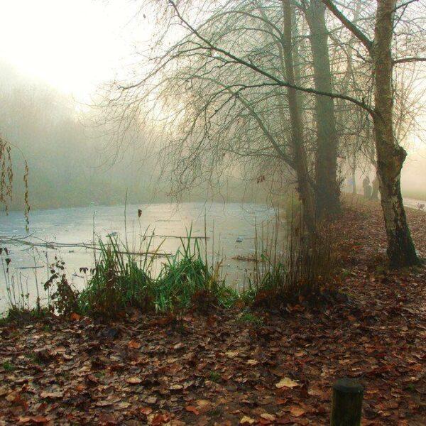 Ninesprings - Yeovil Country Park photo 1