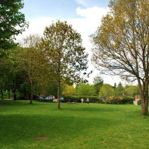 Ninesprings - Yeovil Country Park photo 2