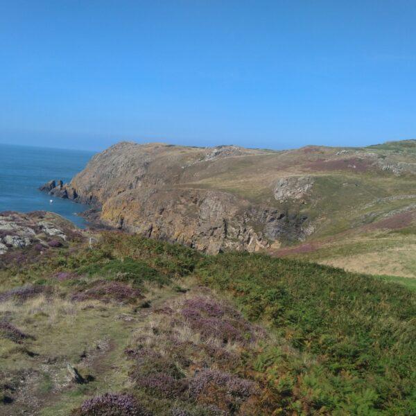 North West Anglesea Coast photo 1