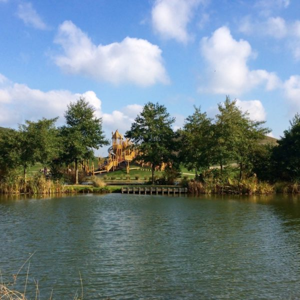 Dog walk at Northala Fields Park