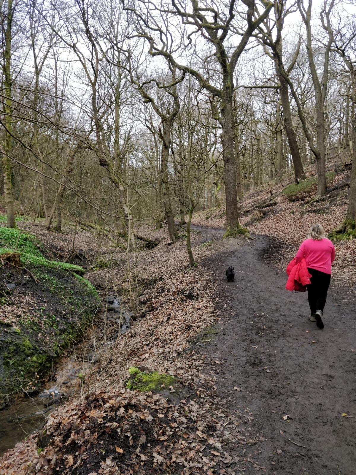Northcliffe Woods, Shipley large photo 3