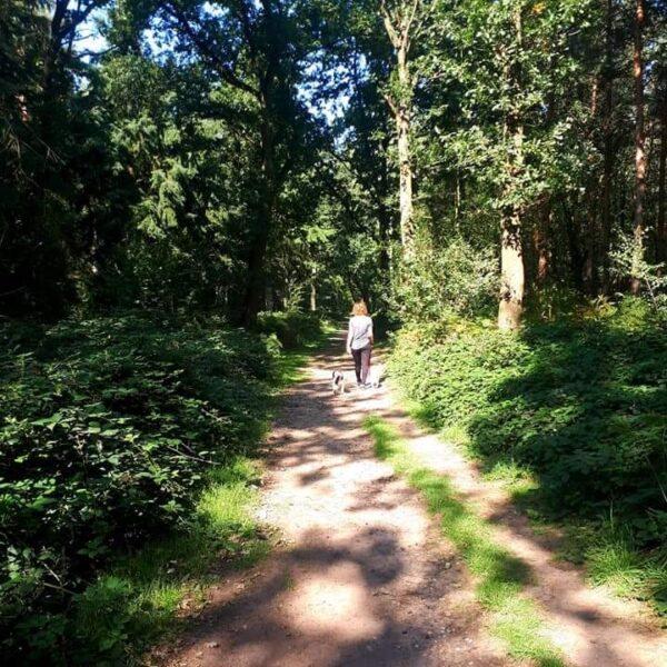 Oakley Wood photo 1