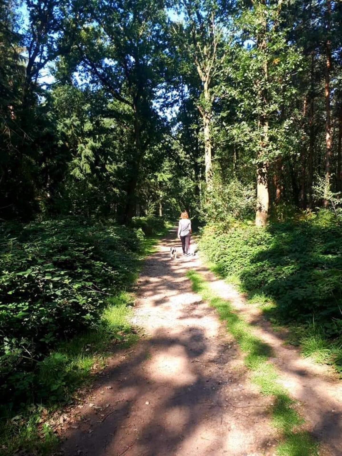 Oakley Wood large photo 1