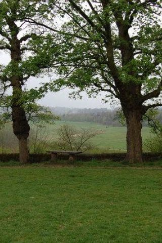 Dog walk at Oakwell Hall And Country Park photo