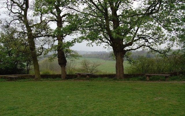 Oakwell Hall And Country Park Dog walk in Yorkshire (West)