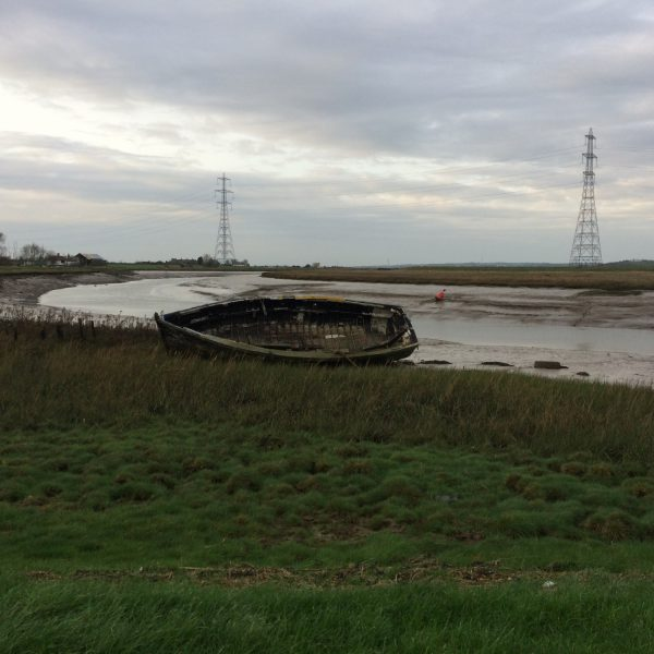 Dog walk at Oare Marshes
