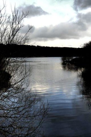 Dog walk at Ogden Water photo