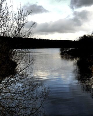 Dog walk at Ogden Water
