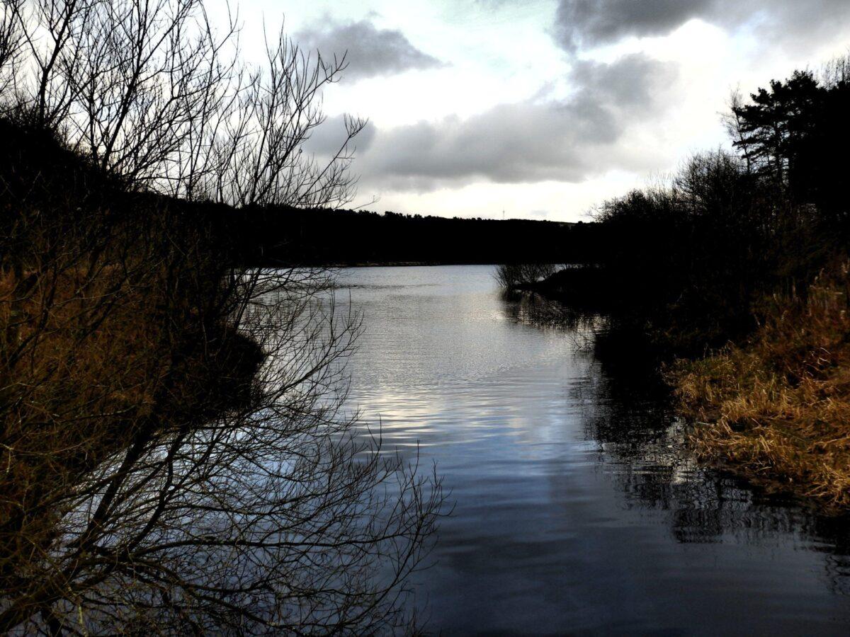 Ogden Water large photo 1