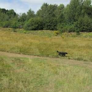 Old Eastleigh Golf Course