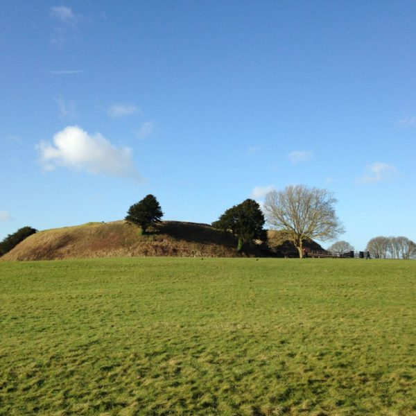 Dog walk at Old Sarum