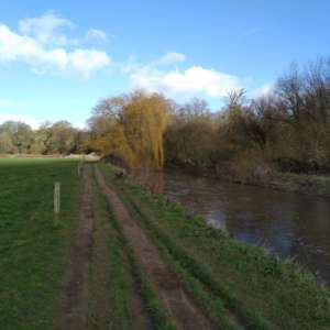 Otterton Circuit