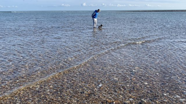 Dog walk at Pagham Harbour