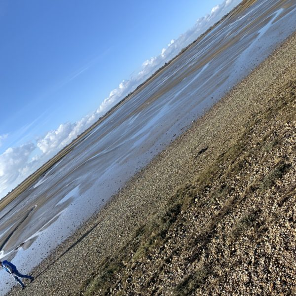Pagham Harbour photo 6