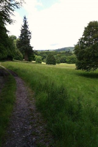 Dog walk at Parke, Bovey Tracey photo