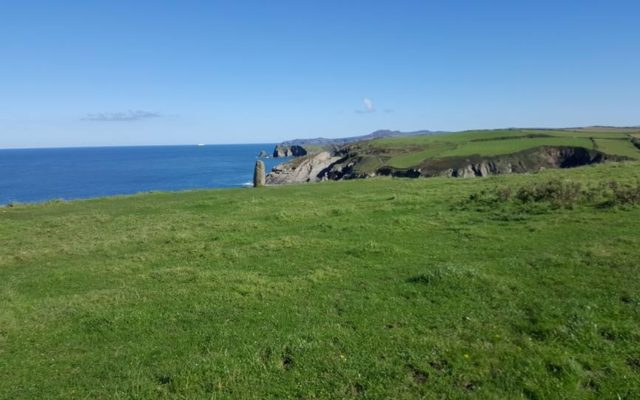 Pembrokeshire Coastal Path Trefin To Porthgain Dog walk in Pembrokeshire