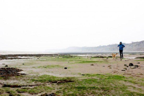 Penarth Beachphoto