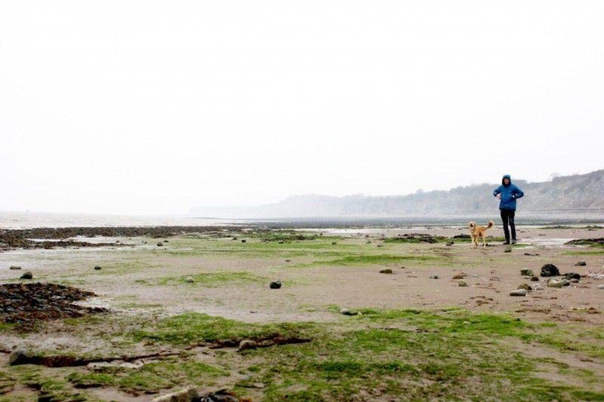 Penarth Beach large photo 1