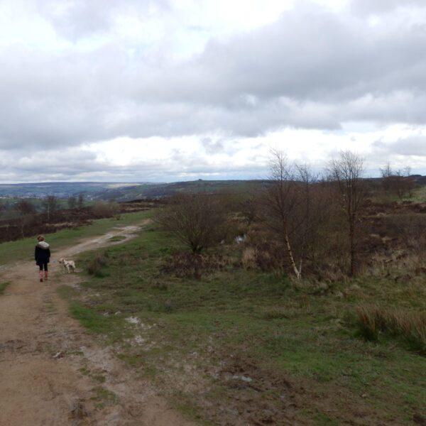 Penistone Hill, Haworth photo 1