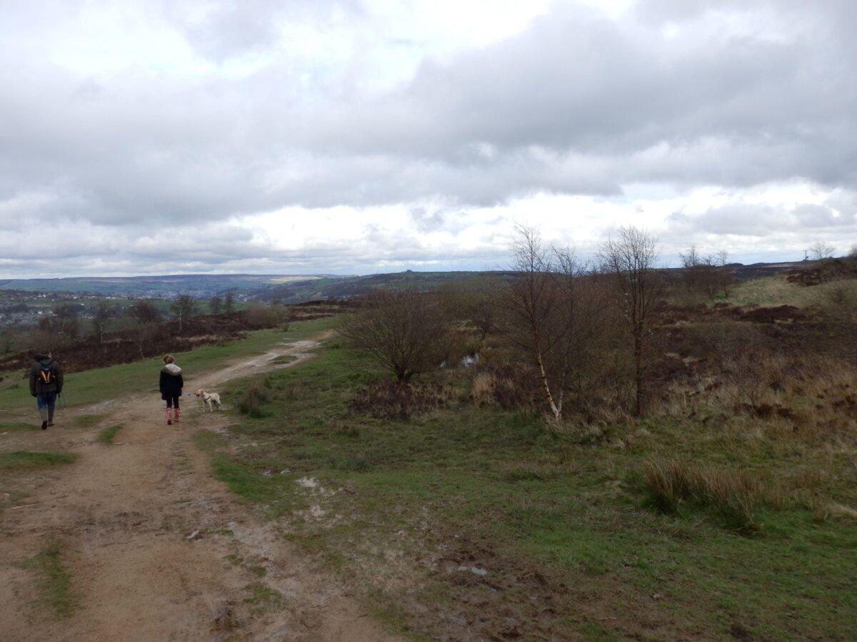 Penistone Hill, Haworth large photo 1