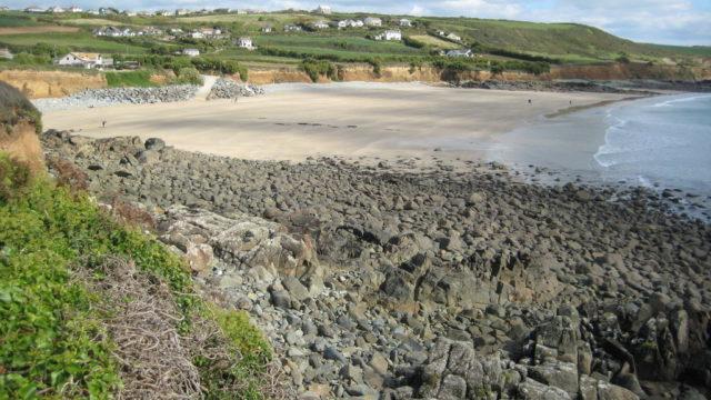 Dog walk at Perranuthnoe Beach, Cornwall