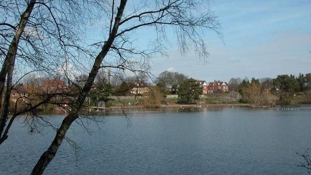 Dog walk at Petersfield Lake And Heath