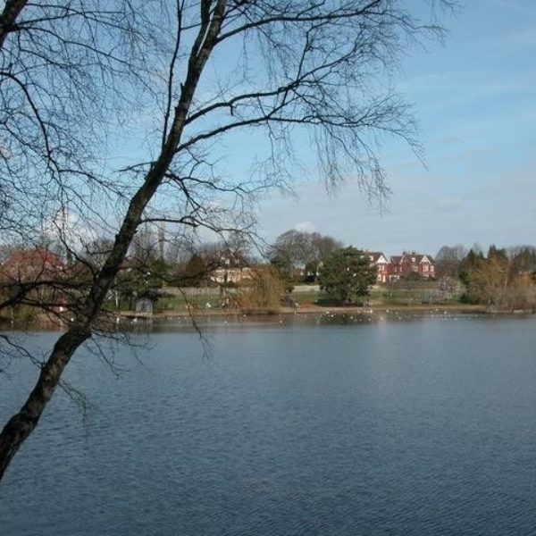 Dog walk at Petersfield Lake And Heath