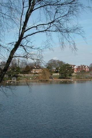 Dog walk at Petersfield Lake And Heath photo