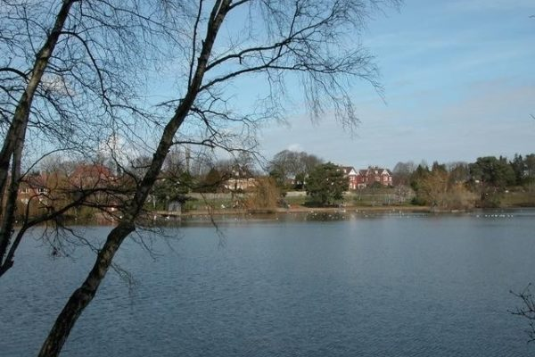 Petersfield Lake And Heathphoto