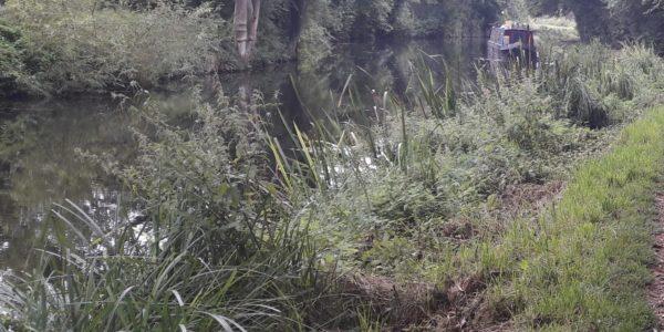 Pishiobury Country Park