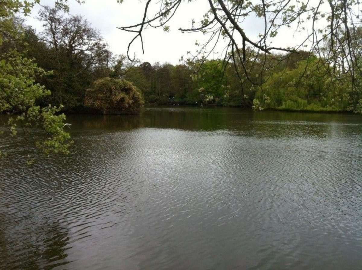 Poole Park large photo 8