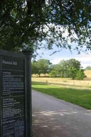 Dog walk at Primrose Hill photo